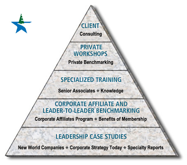 Pyramid of client services and interactions