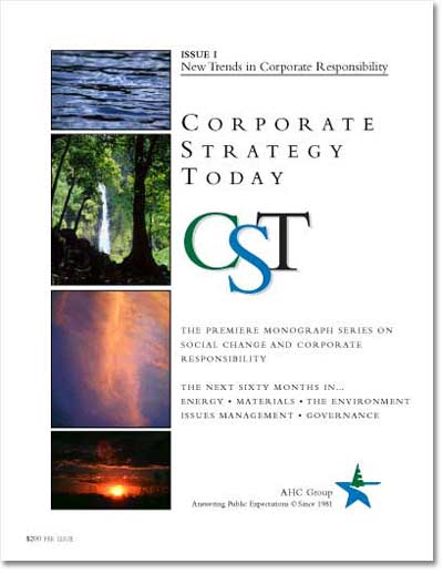 Corporate Strategy Today: Issue 1