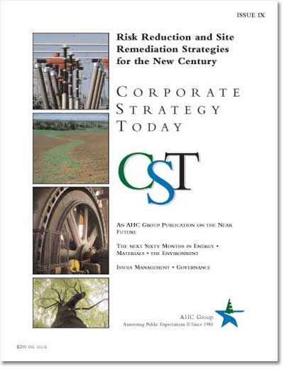 Corporate Strategy Today: Issue 9